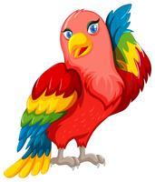 Papagaio lindo com asas coloridas vetor