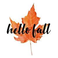 belo texto de letras de caligrafia - Olá, outono. ilustração em vetor folha de bordo artística aquarela vermelho laranja brilhante isolada no fundo branco. Outono design de cartaz de saudação de boas-vindas.