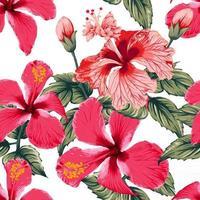 verão tropical sem costura padrão com flores de hibisco vermelho no fundo branco isolado. ilustração vetorial desenho estilo aquarela seco. para projeto de tecido. vetor