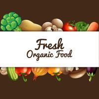 Design de cartaz com legumes frescos vetor