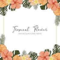 aquarela verão hibisco tropical flor moldura quadrada vetor