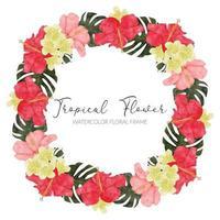 moldura de coroa de flores de hibisco tropical em aquarela vetor