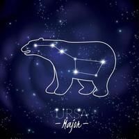 ilustração vetorial de ursa constelação principal vetor