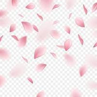 ilustração vetorial realista de fundo sakura vetor