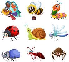 Diferentes tipos de insetos