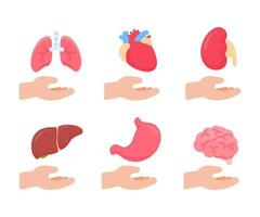 órgãos humanos do vetor. conceito de partes internas do corpo humano de estudo dos sistemas do corpo. vetor