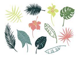 Conjunto de vetores de folhas e flores tropicais.