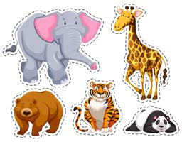 Conjunto de diferentes animais silvestres vetor