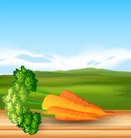 Cenouras orgânicas com belas paisagens vetor