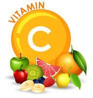 Um conjunto de frutas com alto teor de vitamina C vetor