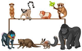 Modelo de placa com animais selvagens
