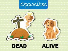 Palavras opostas para mortos e vivos vetor