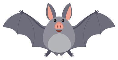 Morcego com asas cinzentas vetor