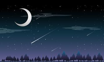 Uma estrela cadente à noite vetor