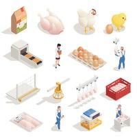 ilustração vetorial conjunto isométrico de fazenda de galinhas vetor