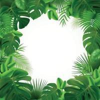 ilustração vetorial de composição de quadro de folhas tropicais vetor