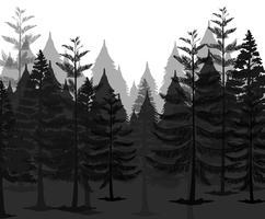 Uma floresta misteriosa escura vetor