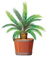 Uma planta crescendo em pote vetor