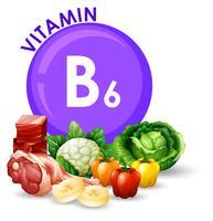 Variedade de diferentes alimentos com vitamina B6 vetor