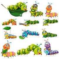 Caráteres diferentes da lagarta da cor vetor