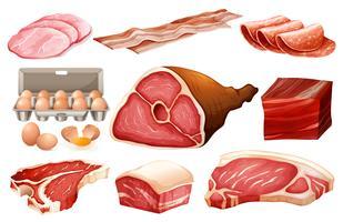 Ingrediente fresco para produtos de carne vetor