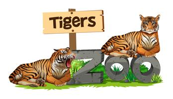 Dois, tigres, ligado, sinal jardim zoológico