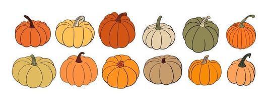 grande conjunto de várias abóboras desenhadas à mão em cores quentes de outono vetor