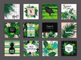 Conjunto de desenhos tropicais de verão. Modelos de vetor. vetor