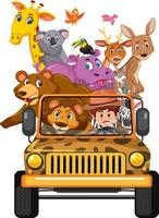 animais selvagens no carro jipe isolado no fundo branco vetor