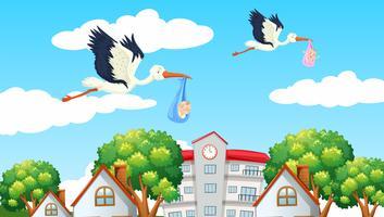 Pássaros entregando bebês no vizinho vetor