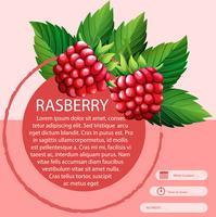 Rasberry e design de texto vetor