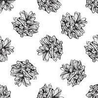 design de padrão natural sem costura preto e branco com pinhas vetor