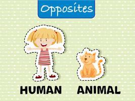 Palavras opostas para humanos e animais vetor