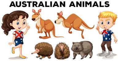 Conjunto de animais selvagens australianos