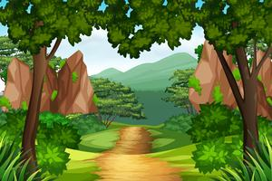 Uma trilha para a floresta vetor
