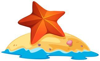 Estrela do mar marrom na pequena ilha vetor