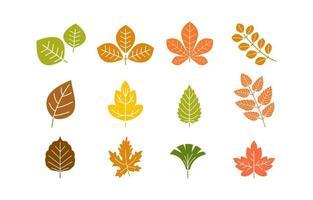 ícone de folhas de outono vetor