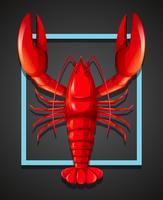 Uma lagosta vermelha no modelo preto vetor