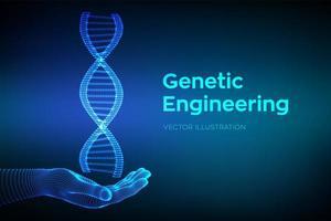 sequência de DNA em mãos. malha de estrutura de moléculas de dna de wireframe. vetor