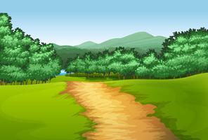 Caminho, madeira, cena vetor