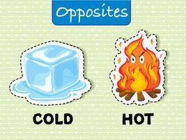 Palavras opostas para frio e quente vetor