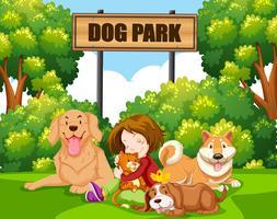 Um, menina, com, animal estimação, parque vetor