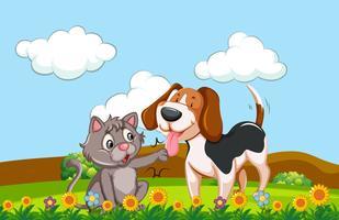 Um cão e gato em um jardim