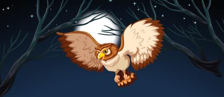 Um, coruja, caça, à noite vetor
