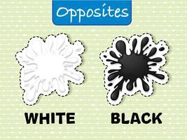 Palavras opostas para branco e preto vetor