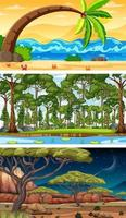conjunto de diferentes cenas horizontais de floresta em tempos diferentes vetor