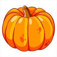comida vegetariana. abóbora madura de laranja. dia das Bruxas. estilo dos desenhos animados. vetor