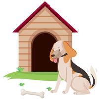 Cão de estimação com osso na casinha de cachorro