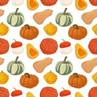 padrão sem emenda com diferentes abóboras de outono vetor