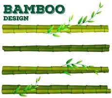 Bambu diferente com caule e folhas vetor